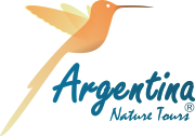 Logo, hummingbird and Argentina Nature Tours